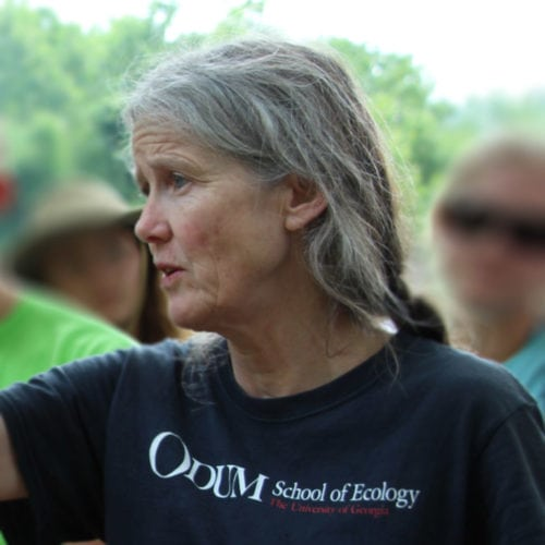 Mary Freeman