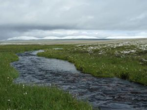 Role of streams in carbon dioxide emission becoming hot topic as global temperatures rise