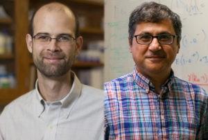 Drake, Rohani among 6 UGA faculty members named AAAS Fellows