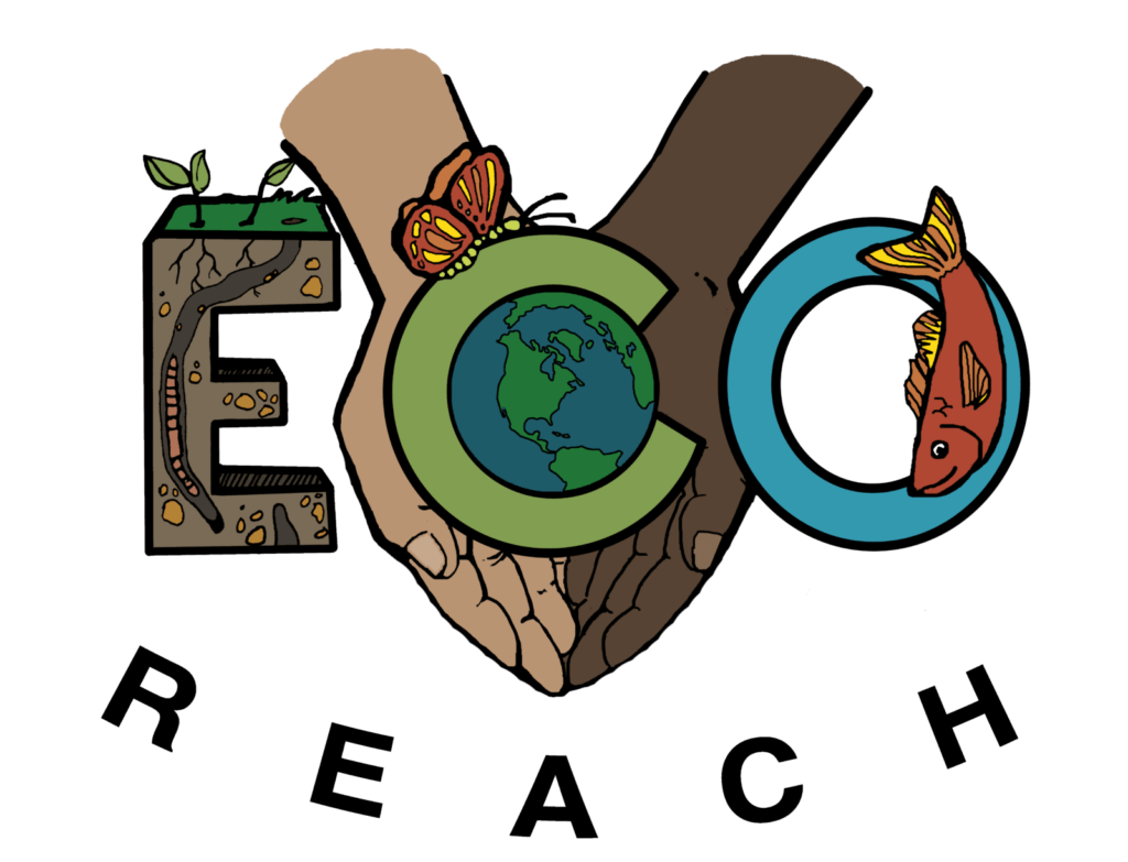 logo ecoreach