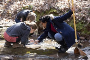 Ecology students use botanical garden as living lab