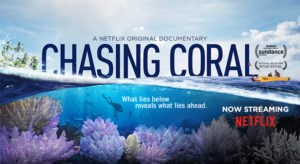 """Odum School to host """"Corals, from Sea to Screen"""""""