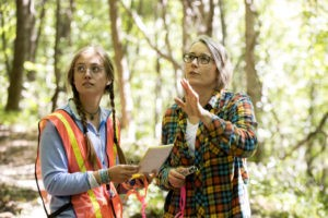 Ecosystem ecologist studies how forests respond to disturbances