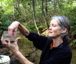 Beneath the surface: Mary Freeman studies fish populations in rivers and streams