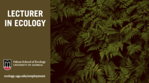 Faculty position: Lecturer in Ecology