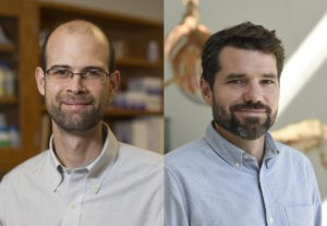 UGA professor, alumnus are 2020 ESA Fellows