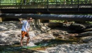 Exploring the underwater world of Georgia's creeks
